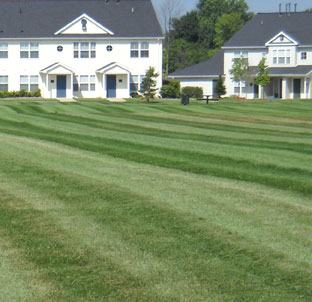 commercial and residential lawn care Lansing, Okemos